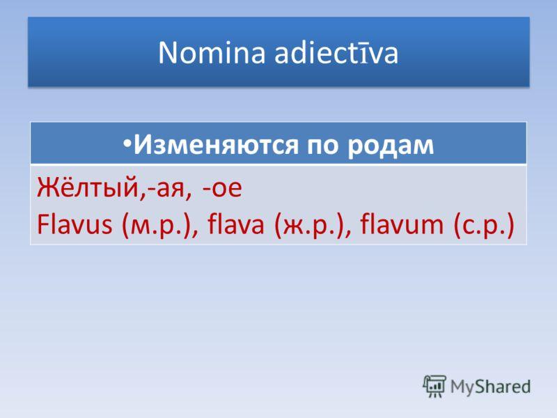 Nomina adiect ī va Изменяются по родам Жёлтый,-ая, -ое Flavus (м.р.), flava (ж.р.), flavum (с.р.)