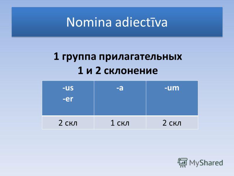 Nomina adiect ī va 1 группа прилагательных 1 и 2 склонение -us -er -a-um 2 скл1 скл2 скл