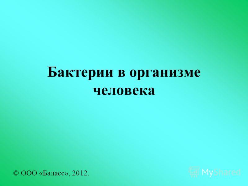 Бактерии в организме человека © ООО «Баласс», 2012.