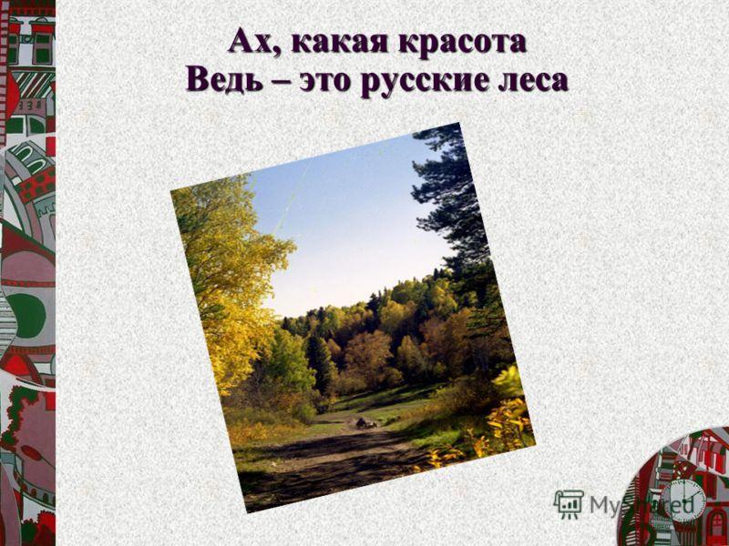 Ах, какая красота Ведь – это русские леса