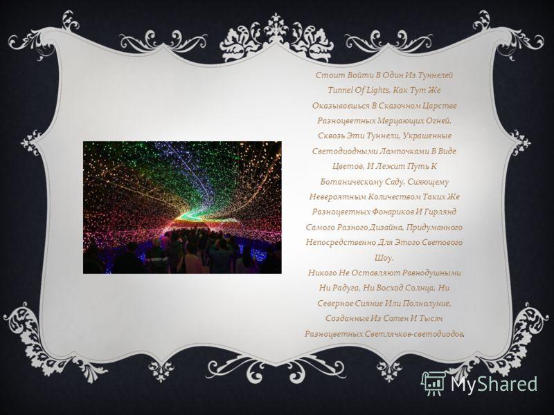 Стоит Войти В Один Из Туннелей Tunnel Of Lights, Как Тут Же Оказываешься В Сказочном Царстве Разноцветных Мерцающих Огней. Сквозь Эти Туннели, Украшенные Светодиодными Лампочками В Виде Цветов, И Лежит Путь К Ботаническому Саду, Сияющему Невероятным