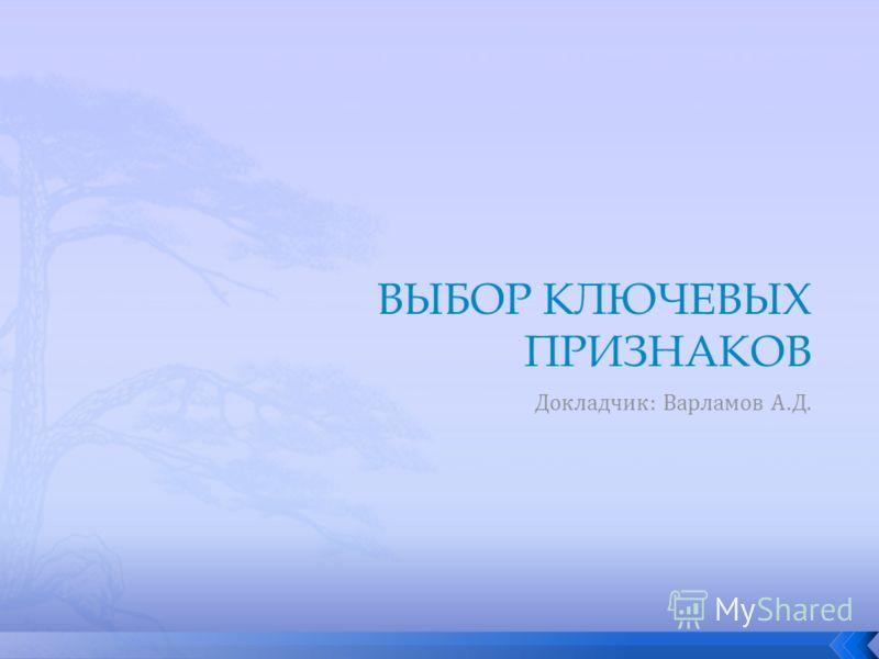 Докладчик: Варламов А.Д.