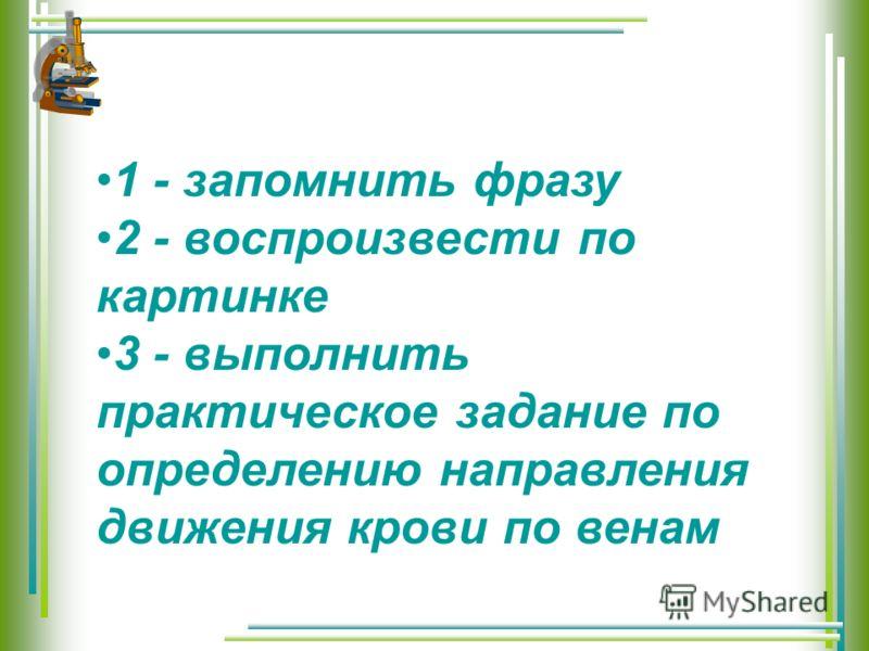 1 - запомнить фразу 2 - воспроизвести по картинке 3 - выполнить практическое задание по определению направления движения крови по венам