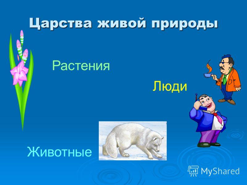 Царства живой природы Растения Животные Люди