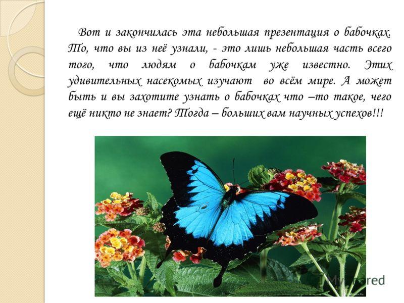 Вот и закончилась эта небольшая презентация о бабочках. То, что вы из неё узнали, - это лишь небольшая часть всего того, что людям о бабочкам уже известно. Этих удивительных насекомых изучают во всём мире. А может быть и вы захотите узнать о бабочках