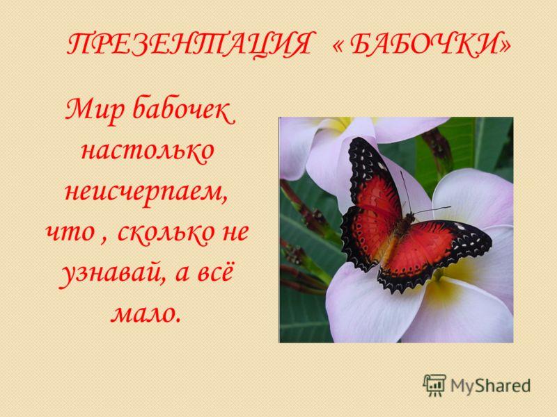 ПРЕЗЕНТАЦИЯ « БАБОЧКИ» Мир бабочек настолько неисчерпаем, что, сколько не узнавай, а всё мало.