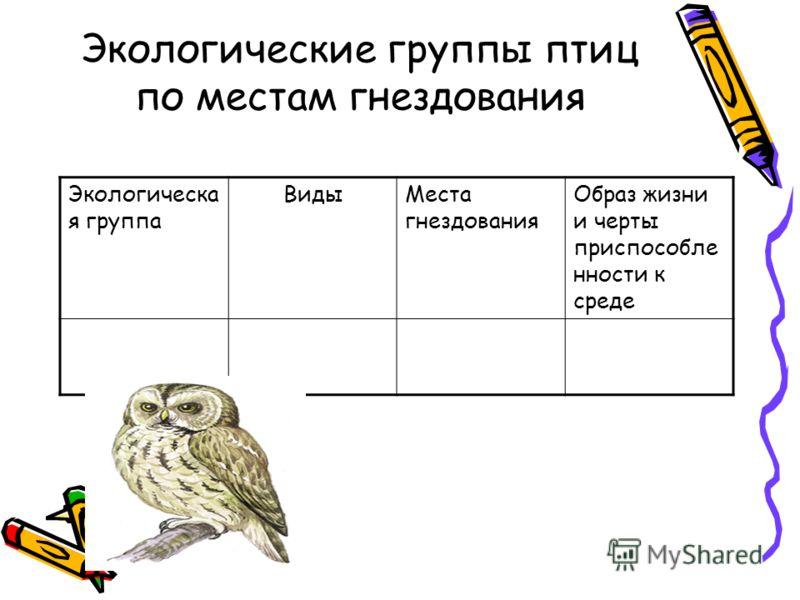 Экологические группы птиц по местам гнездования Экологическа я группа ВидыМеста гнездования Образ жизни и черты приспособле нности к среде