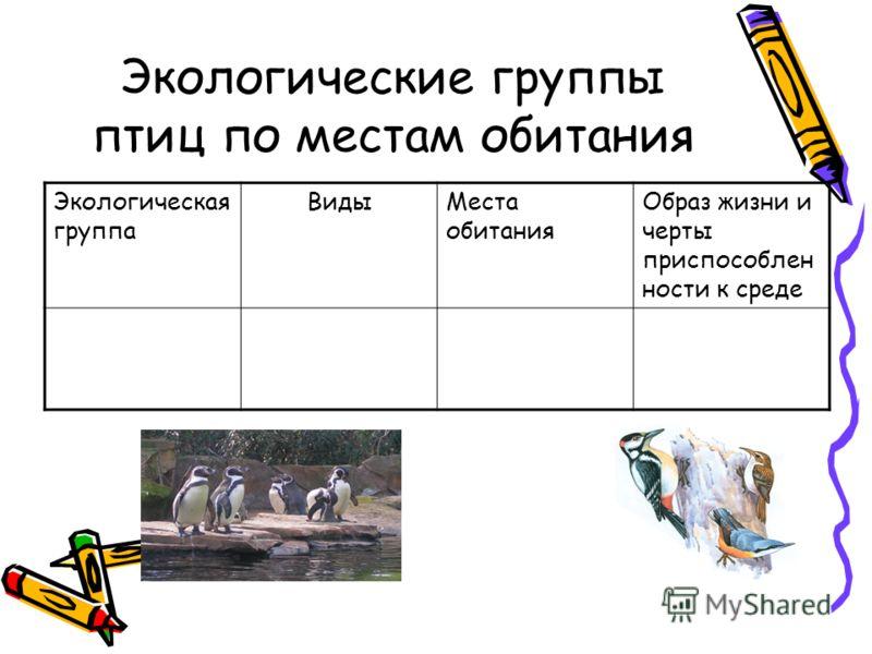 Экологические группы птиц по местам обитания Экологическая группа ВидыМеста обитания Образ жизни и черты приспособлен ности к среде