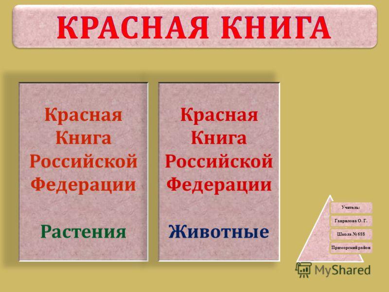 Учитель: Гаврилова О. Г.Школа 688 Приморский район