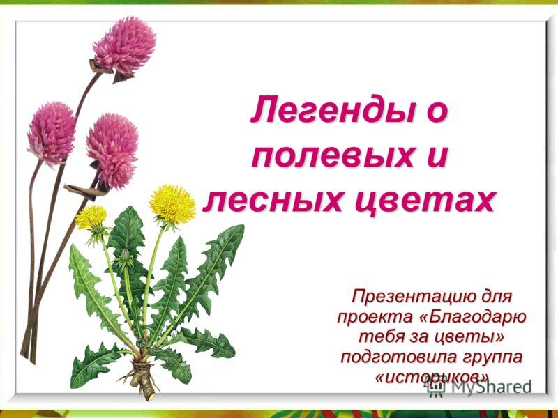 Легенды о полевых и лесных цветах Презентацию для проекта «Благодарю тебя за цветы» подготовила группа «историков»