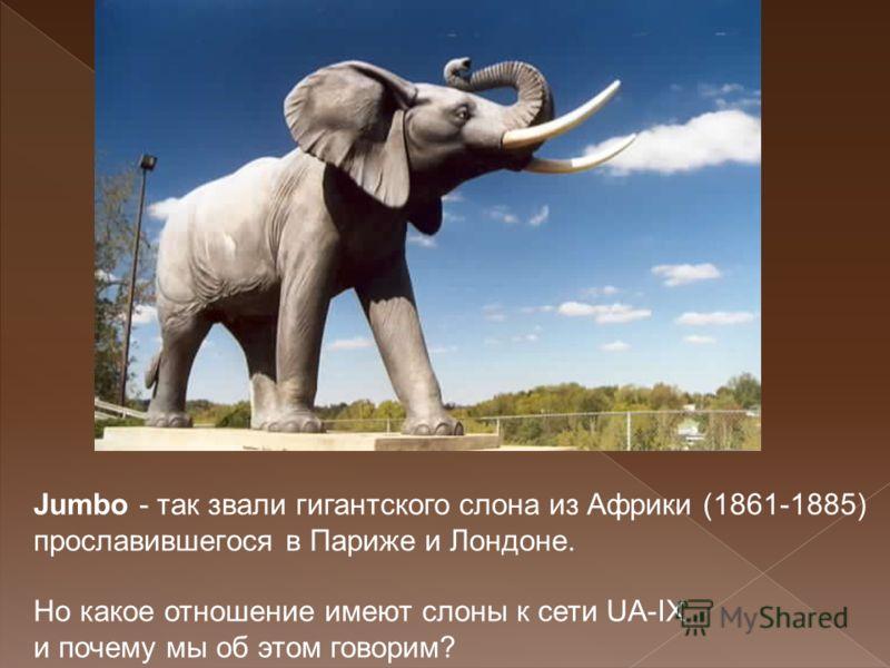 Jumbo - так звали гигантского слона из Африки (1861-1885) прославившегося в Париже и Лондоне. Но какое отношение имеют слоны к сети UA-IX и почему мы об этом говорим?