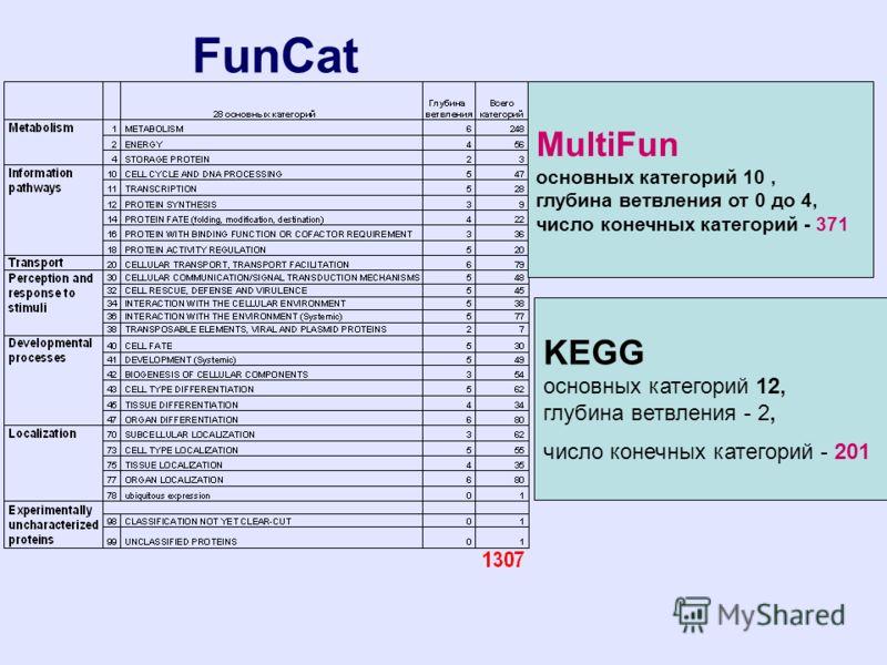 FunCat KEGG основных категорий 12, глубина ветвления - 2, число конечных категорий - 201 MultiFun основных категорий 10, глубина ветвления от 0 до 4, число конечных категорий - 371