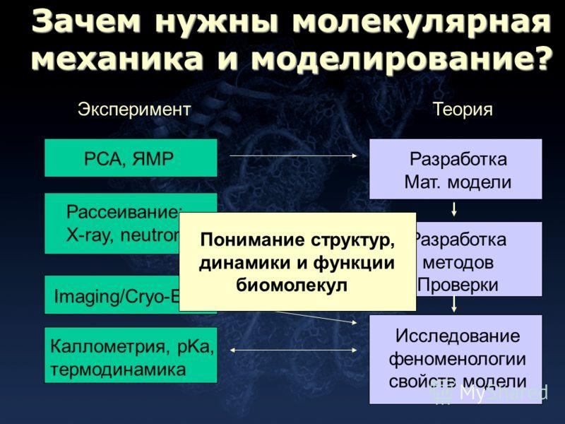 Зачем нужны молекулярная механика и моделирование? ЭкспериментТеория РСА, ЯМРРазработка Мат. модели Рассеивание: X-ray, neutron Imaging/Cryo-EM Каллометрия, pKa, термодинамика Разработка методов Проверки Исследование феноменологии свойств модели Пони