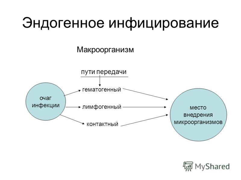 Эндогенное инфицирование Макроорганизм пути передачи гематогенный лимфогенный контактный очаг инфекции место внедрения микроорганизмов