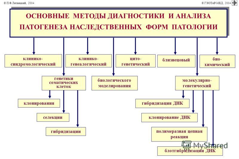 биологического моделирования генетики соматических клеток ОСНОВНЫЕ МЕТОДЫ ДИАГНОСТИКИ И АНАЛИЗА ПАТОГЕНЕЗА НАСЛЕДСТВЕННЫХ ФОРМ ПАТОЛОГИИ клинико- синдромологический клинико- генеалогический цито- генетический молекулярно- генетический близнецовый био