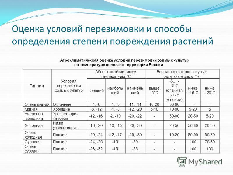 Оценка условий перезимовки и способы определения степени повреждения растений Тип зим Условия перезимовки озимых культур Абсолютный минимум температуры, С Вероятность температуры в отдельные зимы (%) средний наиболь ший наимень ший выше -5 С -5… - 15