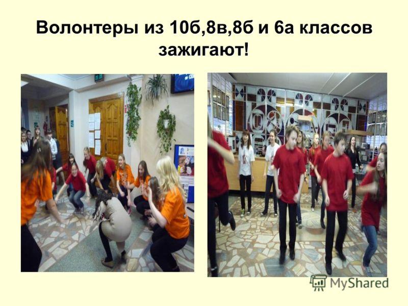 Волонтеры из 10б,8в,8б и 6а классов зажигают!