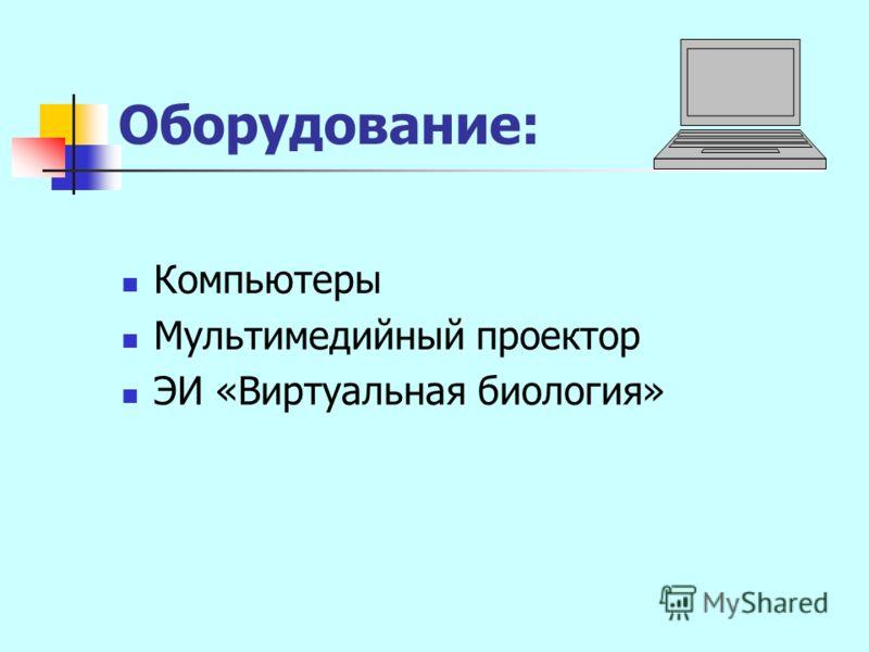 Оборудование: Компьютеры Мультимедийный проектор ЭИ «Виртуальная биология»