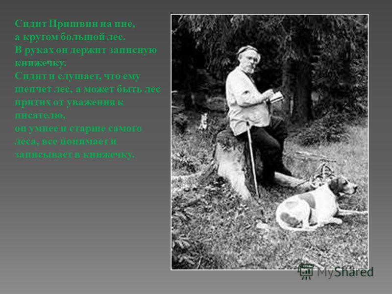 Сидит Пришвин на пне, а кругом большой лес. В руках он держит записную книжечку. Сидит и слушает, что ему шепчет лес, а может быть лес притих от уважения к писателю, он умнее и старше самого леса, все понимает и записывает в книжечку.