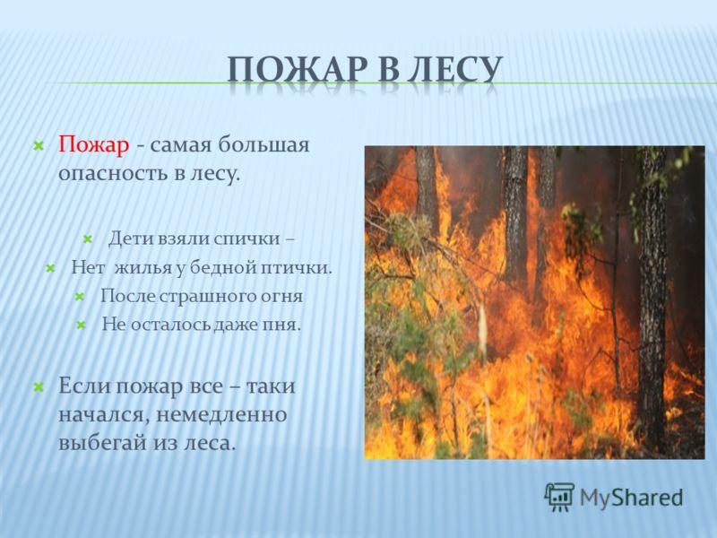 Пожар - самая большая опасность в лесу. Дети взяли спички – Нет жилья у бедной птички. После страшного огня Не осталось даже пня. Если пожар все – таки начался, немедленно выбегай из леса.