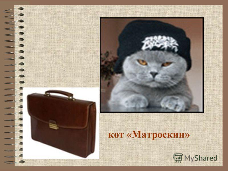 кот «Матроскин»