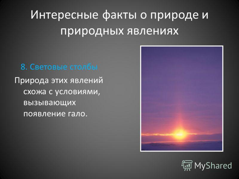 Интересные факты о природе и природных явлениях 8. Световые столбы Природа этих явлений схожа с условиями, вызывающих появление гало.