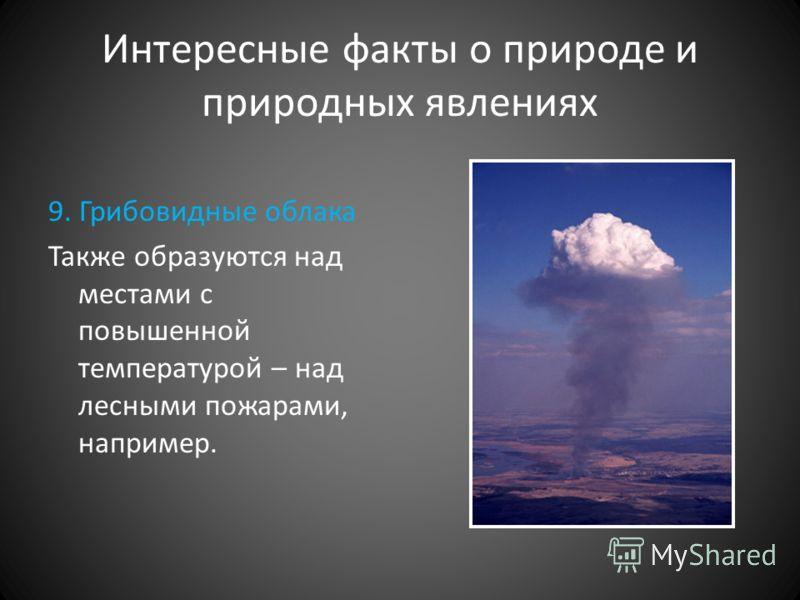 Интересные факты о природе и природных явлениях 9. Грибовидные облака Также образуются над местами с повышенной температурой – над лесными пожарами, например.