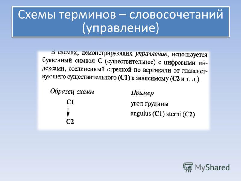 Схемы терминов – словосочетаний (управление) Схемы терминов – словосочетаний (управление)
