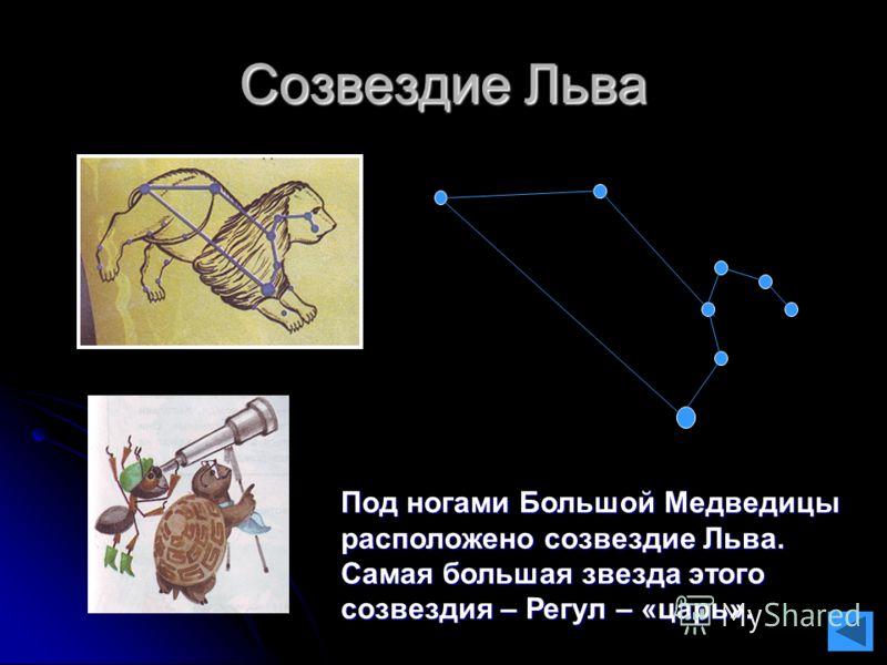 Созвездие Льва Под ногами Большой Медведицы расположено созвездие Льва. Самая большая звезда этого созвездия – Регул – «царь».