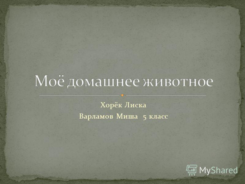Хорёк Лиска Варламов Миша 5 класс