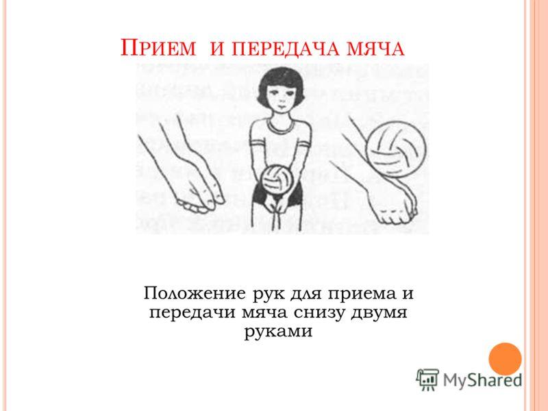 Положение рук для приема и передачи мяча снизу двумя руками П РИЕМ И ПЕРЕДАЧА МЯЧА