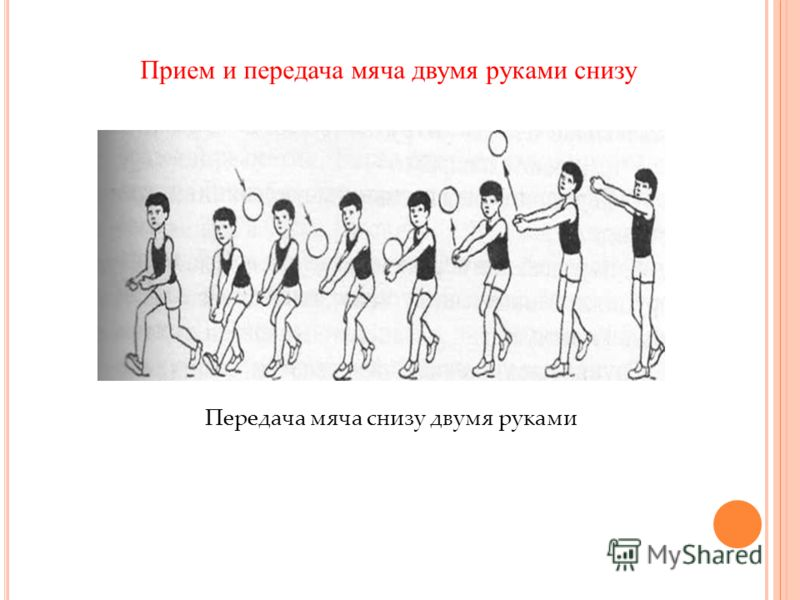 Передача мяча снизу двумя руками Прием и передача мяча двумя руками снизу