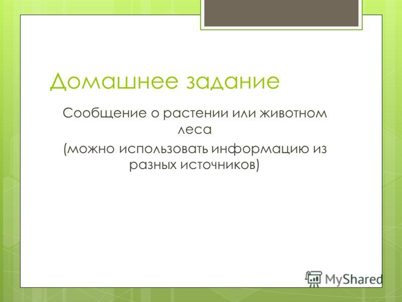 Домашнее задание Сообщение о растении или животном леса (можно использовать информацию из разных источников)