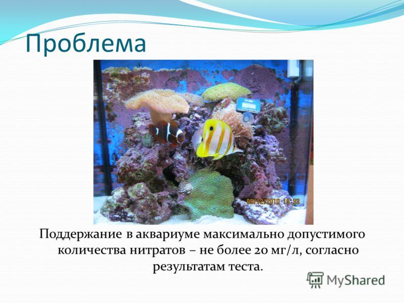 Проблема Поддержание в аквариуме максимально допустимого количества нитратов – не более 20 мг/л, согласно результатам теста.