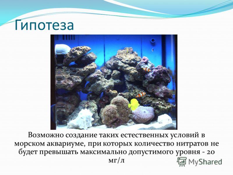 Гипотеза Возможно создание таких естественных условий в морском аквариуме, при которых количество нитратов не будет превышать максимально допустимого уровня - 20 мг/л