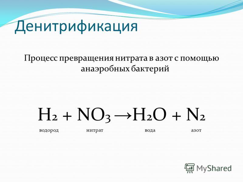 Денитрификация Процесс превращения нитрата в азот с помощью анаэробных бактерий H 2 + NO 3 H 2 O + N 2 водороднитратводаазот