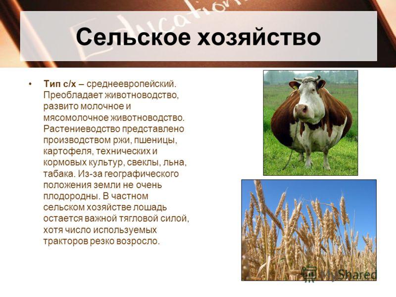 Сельское хозяйство Тип с/х – среднеевропейский. Преобладает животноводство, развито молочное и мясомолочное животноводство. Растениеводство представле