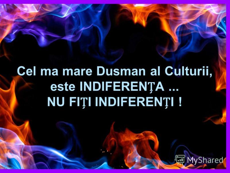 Cel ma mare Dusman al Culturii, este INDIFERENA... NU FII INDIFERENI !