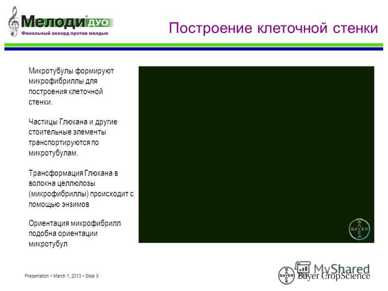 Presentation March 1, 2013 Slide 9 Построение клеточной стенки Трансформация Глюкана в волокна целлюлозы (микрофибриллы) происходит с помощью энзимов Ориентация микрофибрилл подобна ориентации микротубул Микротубулы формируют микрофибриллы для постро