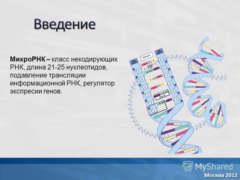 МикроРНК – класс некодирующих РНК, длина 21-25 нуклеотидов, подавление трансляции информационной РНК, регулятор экспресии генов.