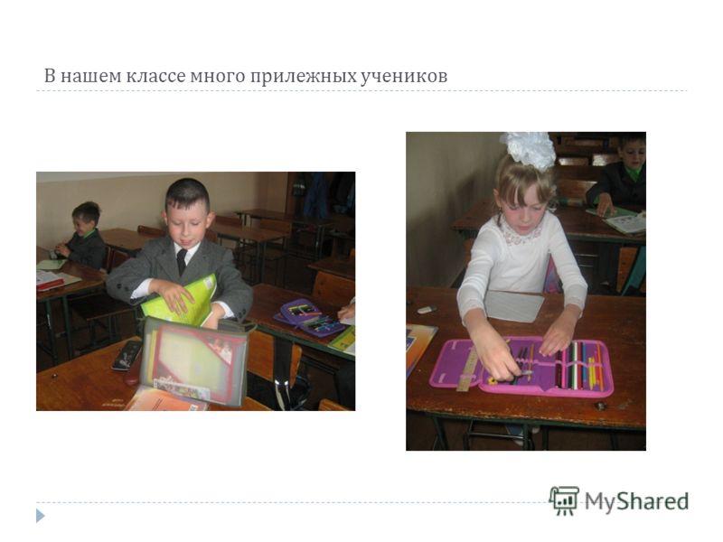В нашем классе много прилежных учеников