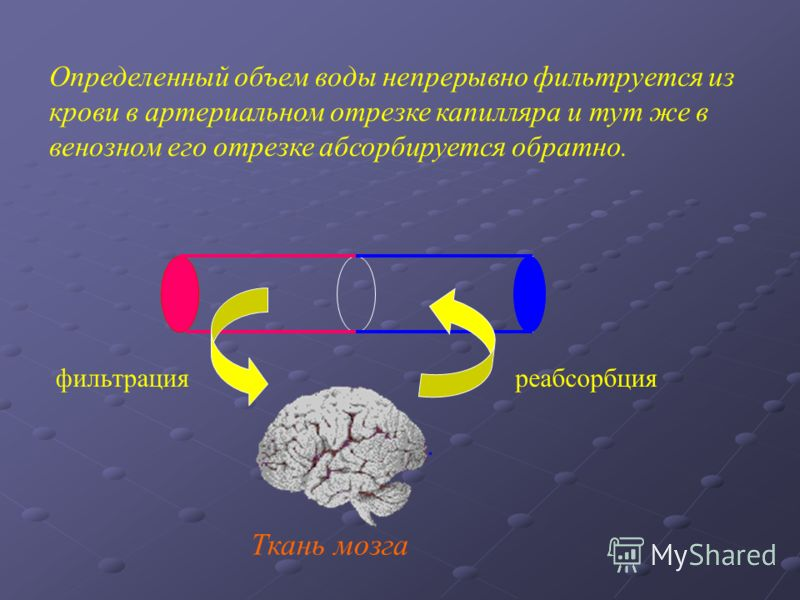 Ткань мозга Определенный объем воды непрерывно фильтруется из крови в артериальном отрезке капилляра и тут же в венозном его отрезке абсорбируется обратно. фильтрацияреабсорбция