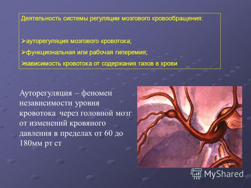 Деятельность системы регуляции мозгового кровообращения: ауторегуляция мозгового кровотока; функциональная или рабочая гиперемия; зависимость кровотока от содержания газов в крови Ауторегуляция – феномен независимости уровня кровотока через головной