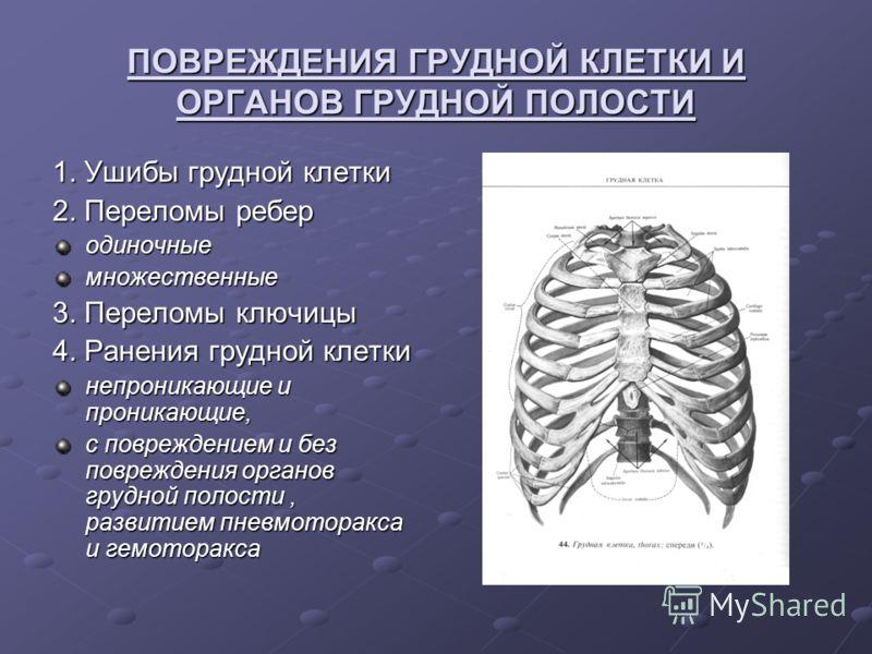 ПОВРЕЖДЕНИЯ ГРУДНОЙ КЛЕТКИ И ОРГАНОВ ГРУДНОЙ ПОЛОСТИ 1. Ушибы грудной клетки 2. Переломы ребер одиночныемножественные 3. Переломы ключицы 4. Ранения грудной клетки непроникающие и проникающие, с повреждением и без повреждения органов грудной полости,