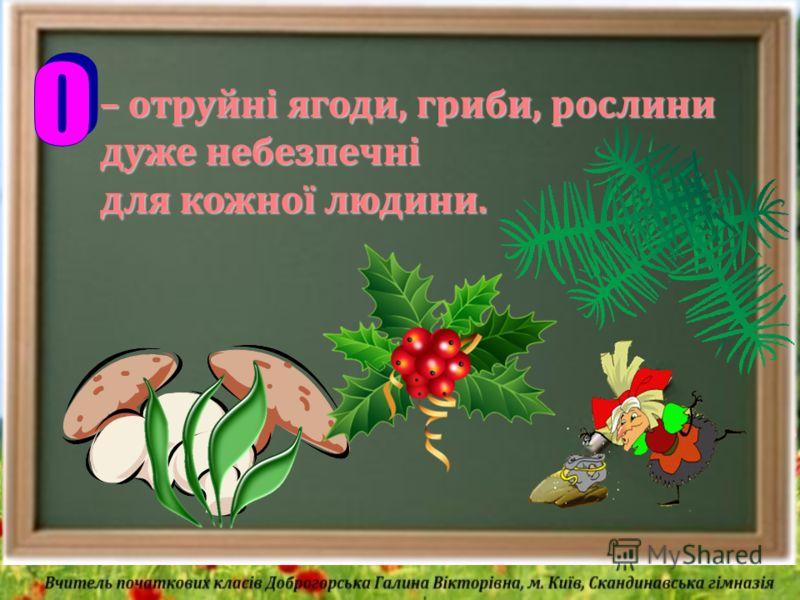 – отруйні ягоди, гриби, рослини дуже небезпечні для кожної людини.