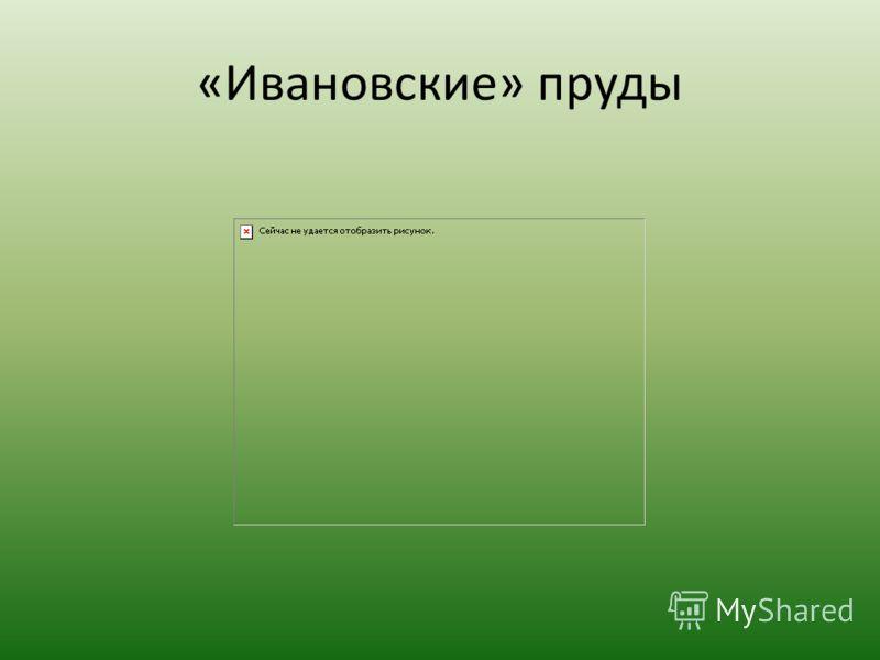 «Ивановские» пруды