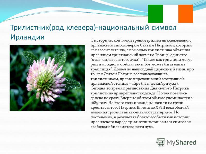 Трилистник(род клевера)-национальный символ Ирландии С исторической точки зрения трилистник связывают с ирландским миссионером Святым Патриком, который, как гласит легенда, с помощью трилистника объяснял ирландцам христианский догмат о Троице, единст