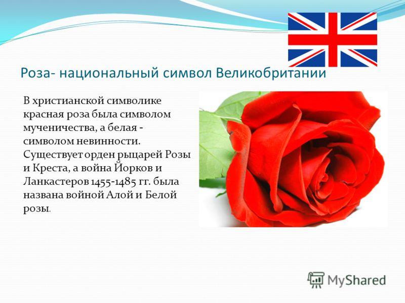 Роза- национальный символ Великобритании В христианской символике красная роза была символом мученичества, а белая - символом невинности. Существует орден рыцарей Розы и Креста, а война Йорков и Ланкастеров 1455-1485 гг. была названа войной Алой и Бе