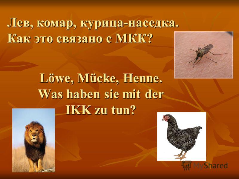Löwe, Mücke, Henne. Was haben sie mit der IKK zu tun? Лев, комар, курица-наседка. Как это связано с МКК?