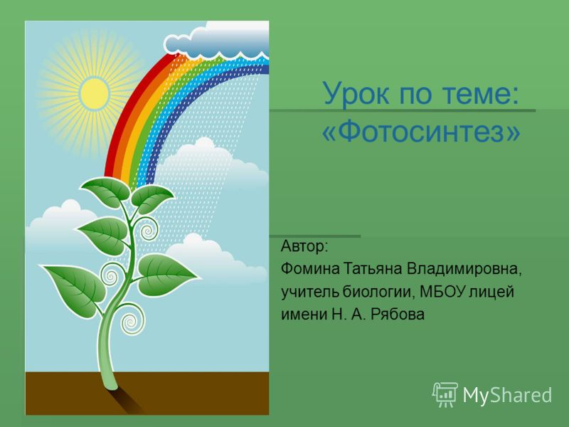 Урок по теме: «Фотосинтез» Автор: Фомина Татьяна Владимировна, учитель биологии, МБОУ лицей имени Н. А. Рябова